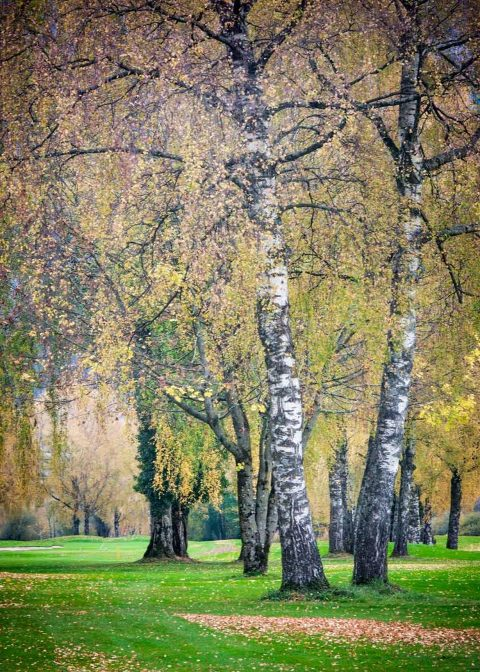 Interlaken Golf Club