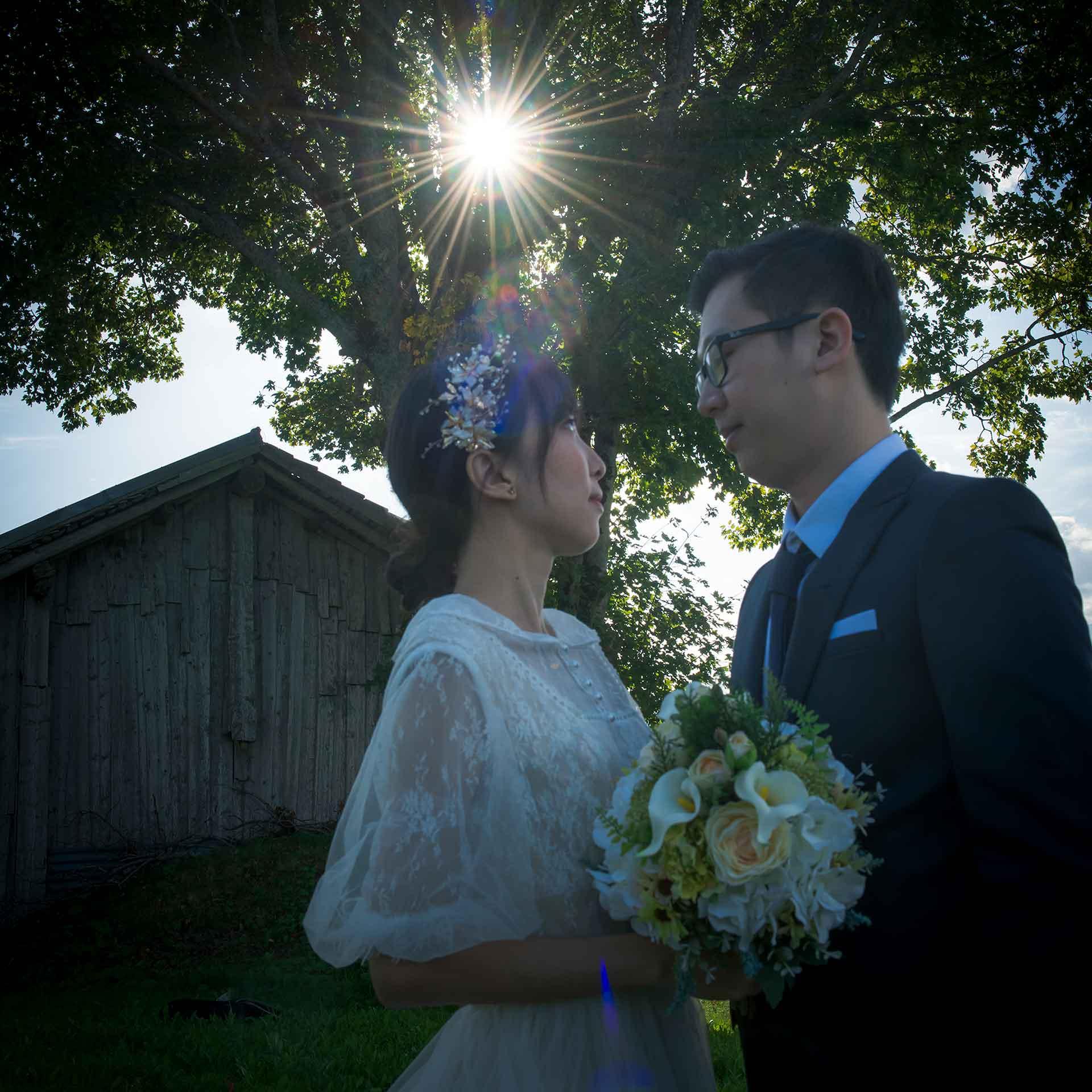 Pre Wedding Photo Shoot in Swiss Alps 3